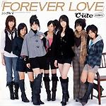 foreverlovesinglevcoversmall